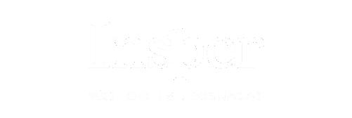 LOGOMARCA - INSPER - APLICAÇÃO SITE